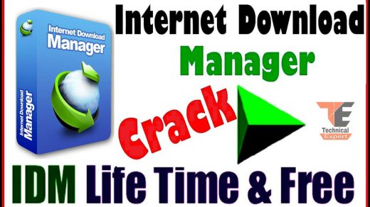 IDM Crack with Internet Download Manager 6.38 Build 21 [Latest]